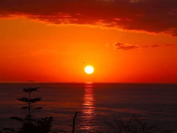 【風景】その日によって、様々な風景がごらんになることができます。特に朝焼けは毎日変化しています。