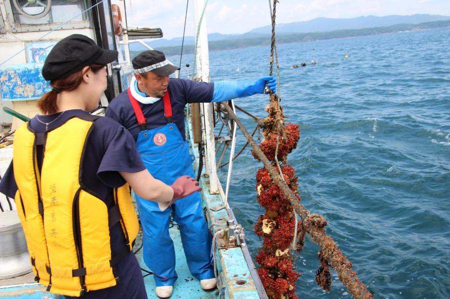 養殖漁業を体験