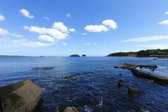志津川湾(車で約15分)