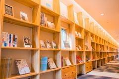 壁一面の棚にさまざまな書籍があり、一晩中楽しめます